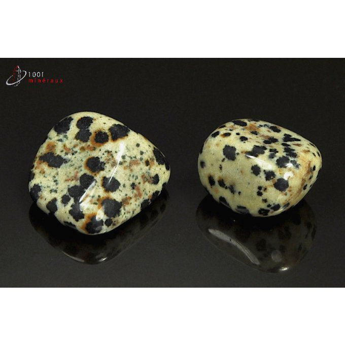 Lot de 2 Jaspes dalmatiens polis - Mexique - pierres roulées 2.1 - 2.5 cm / 18 g / AT33