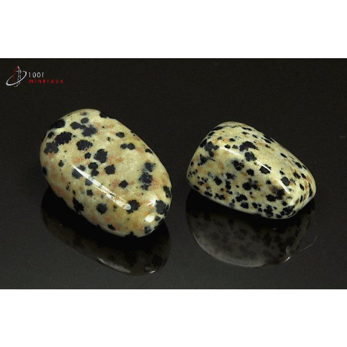 Lot de 2 Jaspes dalmatiens polis - Mexique - pierres roulées 2.3 - 3.1 cm / 17 g / AT35