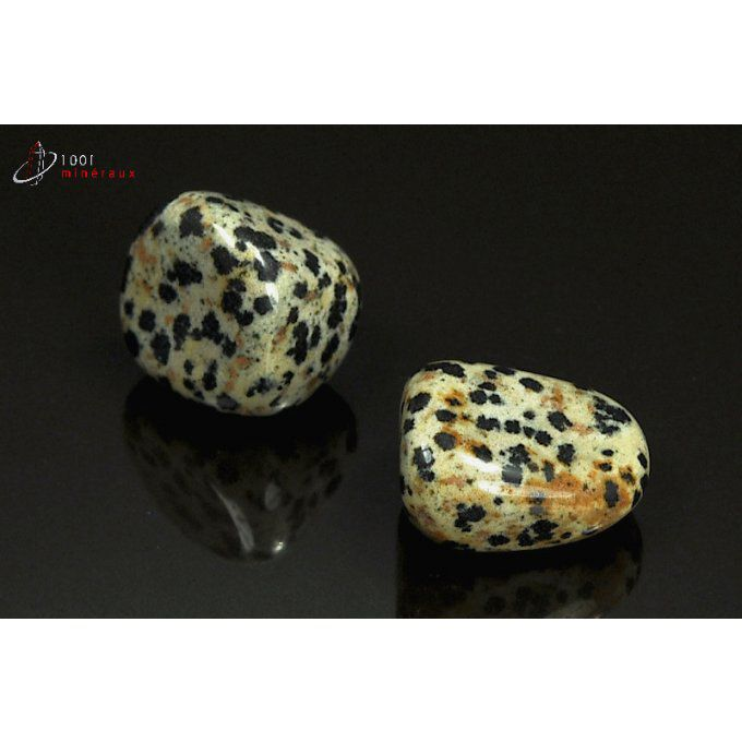 Lot de 2 Jaspes dalmatiens polis - Mexique - pierres roulées 2 - 2.2 cm / 15 g / AT36